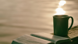 Meditation Anfänger Buch Liste