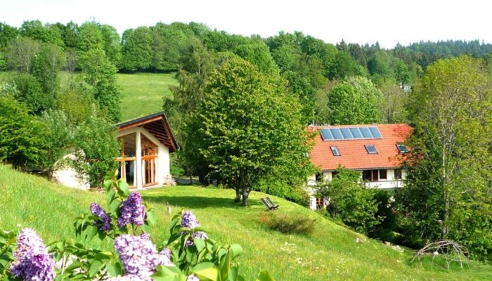 Vipassana Retreat Schwarzwald