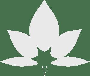 Nicole Stern Meditationskurse Logo